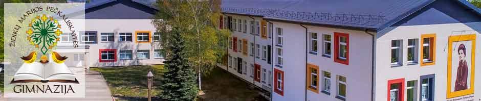 Židikų Marijos Pečkauskaitės gimnazija